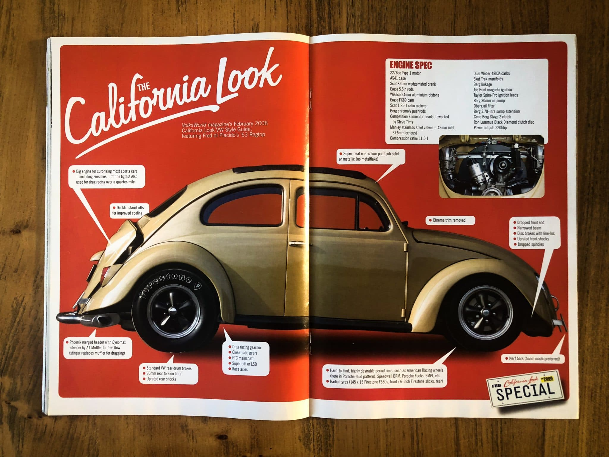 California Look Beetle - Andy Jewell